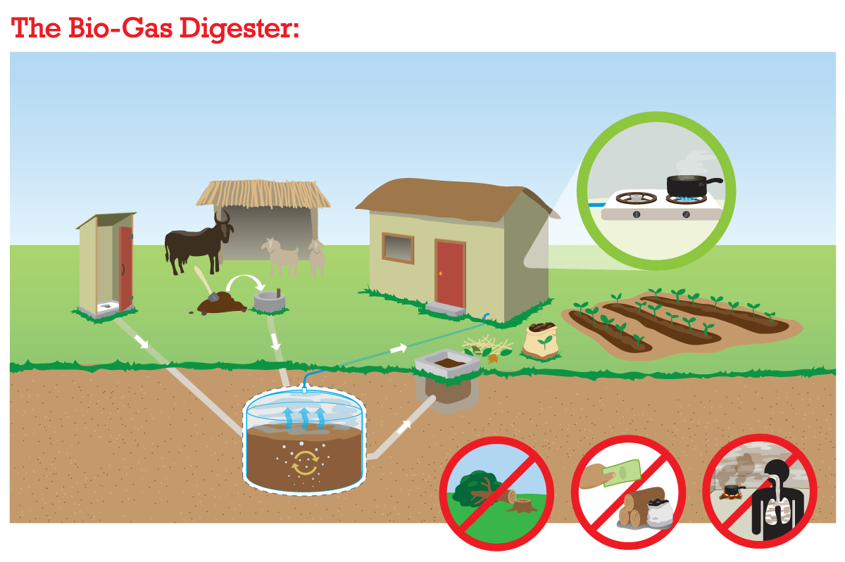 how a bio-gas digester works - illustration