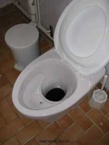 Western ecosan toilet